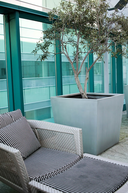 hotel patio sf