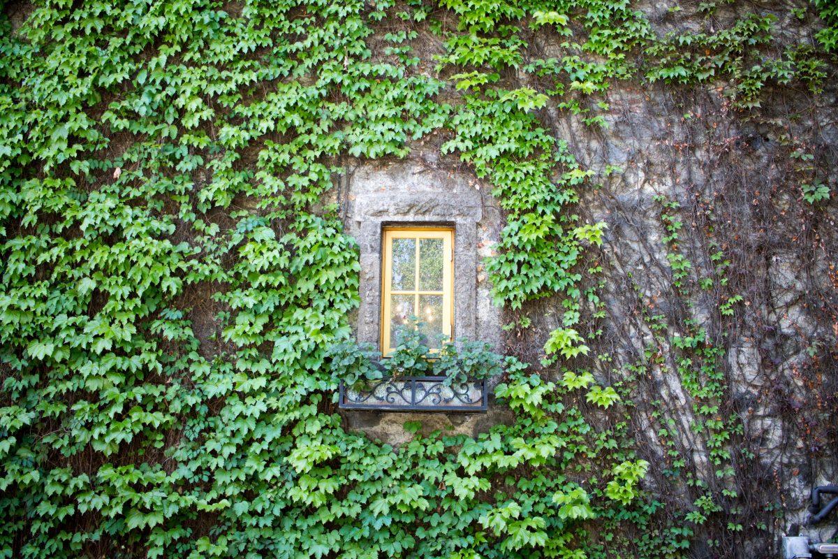 Far Niente Gardens