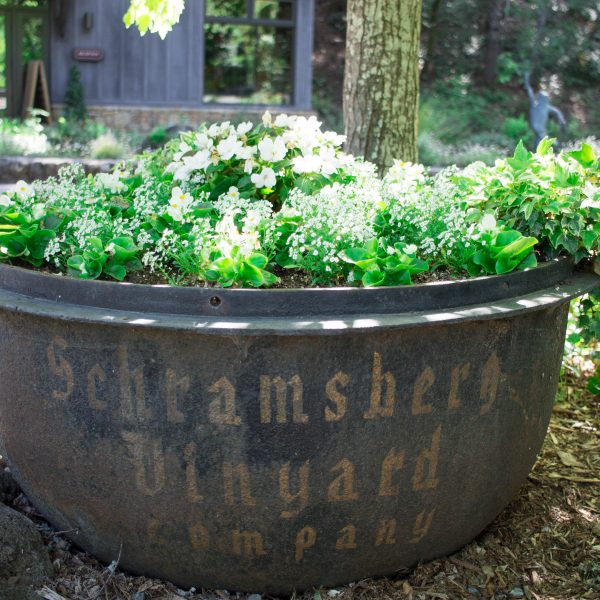 The Best Sparkling Wine in Napa Valley at Schramsberg Vineyards