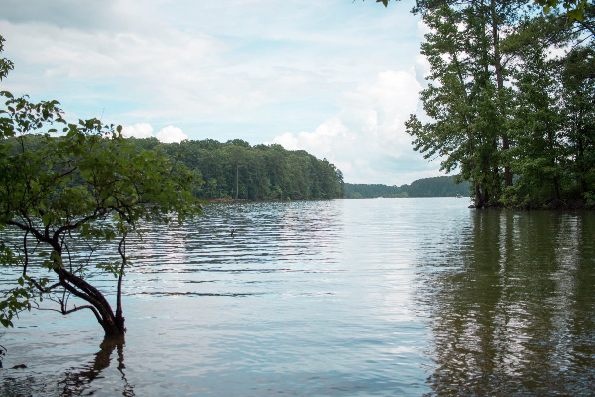 Atlanta-based blogger, Alex Berger, shares how to plan the perfect lake day